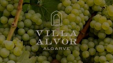 Jantar Vínico Villa Alvor