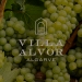 Wine tasting dinner Villa Alvor
